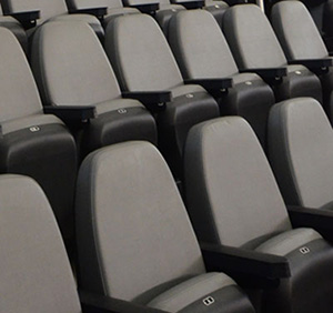 Detroit Lions use ACME Mills theatre seating and venue seating products